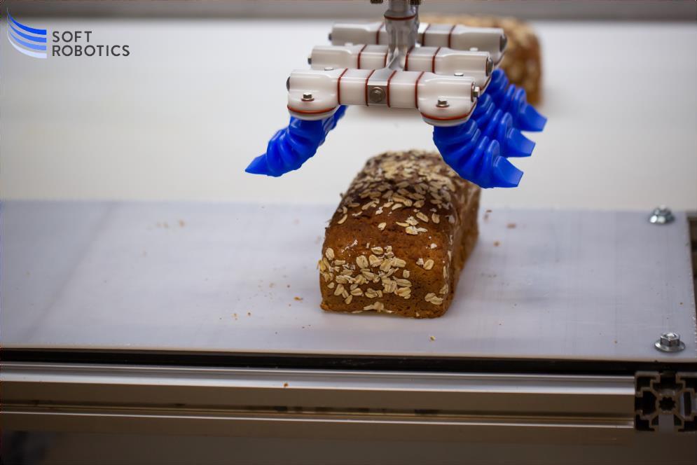 SOFT ROBOTICS ahora en ROBOTPLUS